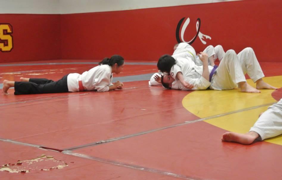 My Approach to Teaching Martial Arts Seminars 2